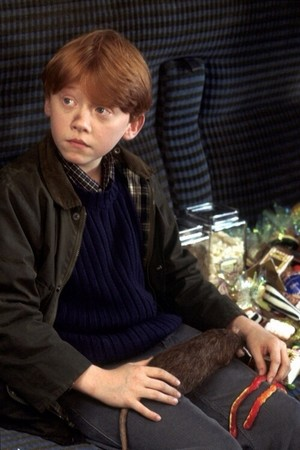 Ronald Weasley: on the way to Hogwarts