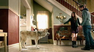"""S04E11 - """"Ramona The Pest"""""""