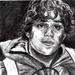 Samwise Gamgee Fan Art - lord-of-the-rings icon