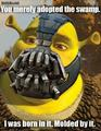 Shrek as Bane