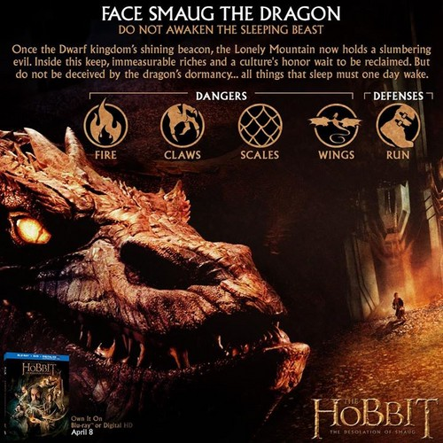 द हॉबिट वॉलपेपर probably with ऐनीमे called Survival Tips: Face Smaug the Dragon