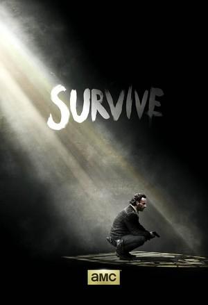Survive ~ Rick Grimes Poster