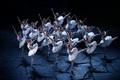 Swan Lake - Moscow ballet - ballet photo