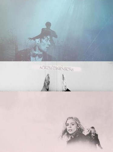 The Doctor and Rose wallpaper titled Doctor and Rose