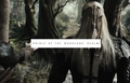 Mirkwood Elves of The Hobbit