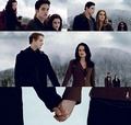 The fight scene of breakng dawn - twilight-series photo