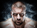 wwe - Triple H Wallpaper wallpaper