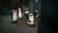 Watching Lunacorn. - penguins-of-madagascar photo
