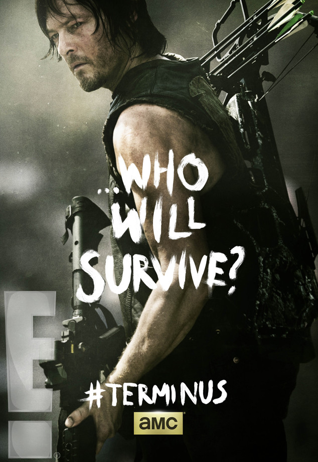 Who Will Survive? ~ Daryl Dixon Poster
