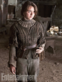 arya stark - house-stark photo