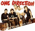 one direction Tour 2014 - one-direction photo