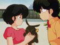 ranma and akane (with p-chan) - ranma-1-2 photo