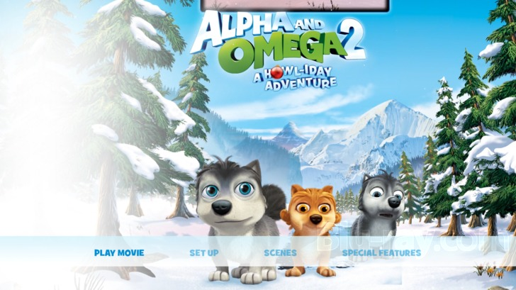 the dvd menu