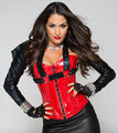 Bella Twins as Legion of Doom (Nikki) - wwe-divas photo