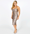 WWE Hall of Fame 2014 - Natalya - wwe-divas photo