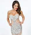 WWE Hall of Fame 2014 - Nikki Bella - wwe-divas photo