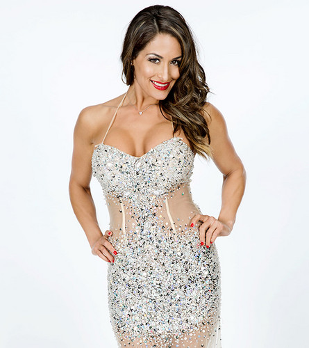 WWE Divas images WWE Hall of Fame 2014 - Nikki Bella HD ...