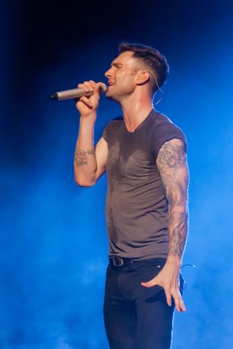 Adam Levine fondo de pantalla called Adam at Bridgestone Arena Nashville TN