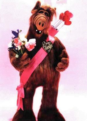 Alf amoureux