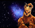 Alf galaxie - alf photo