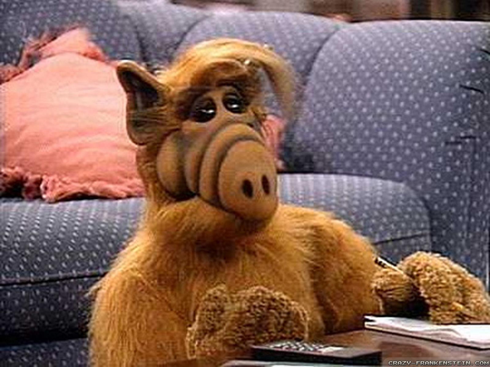 Alf salon 太师椅, fauteuil, 太师