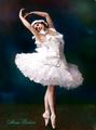 Anna Pavlova - ballet fan art