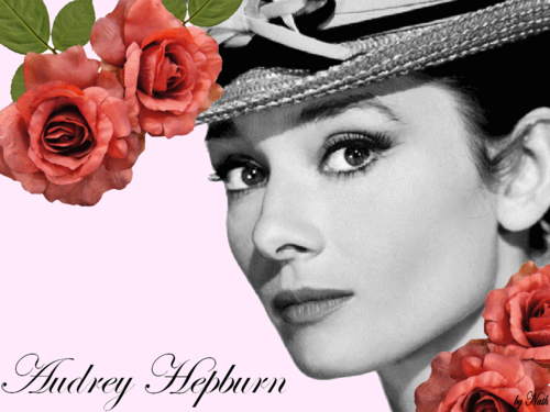 Audrey Hepburn wallpaper with a bouquet, a rose, and a rose entitled Audrey Hepburn