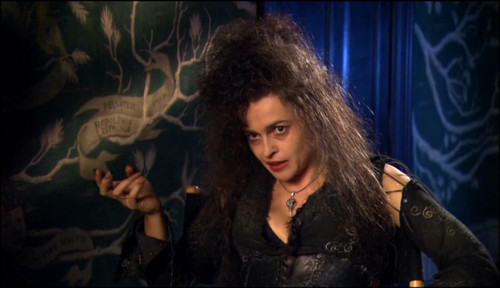 bellatrix lestrange wallpaper probably with a konser called Bellatrix Lestrange
