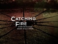 Catching Fire ✗ - the-hunger-games photo