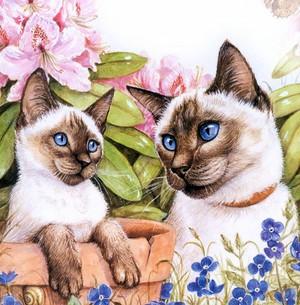 kucing fan art