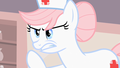 Cupcake Meme 1 - my-little-pony-friendship-is-magic photo