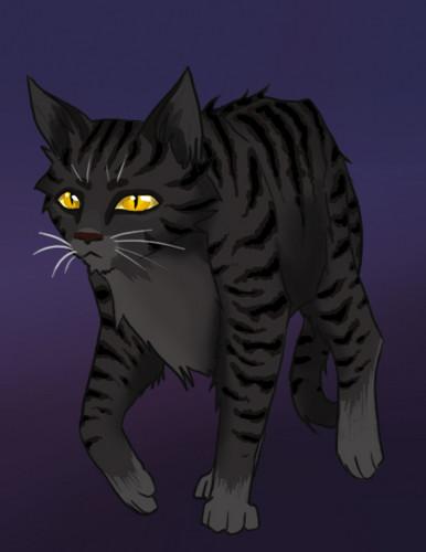 Make Your Own Warrior Cat! hình nền titled Darkstripe