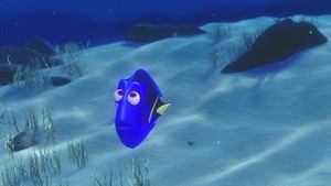 Disney•Pixar Screencaps - Dory