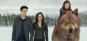 Edward Bella Nessie and Jake
