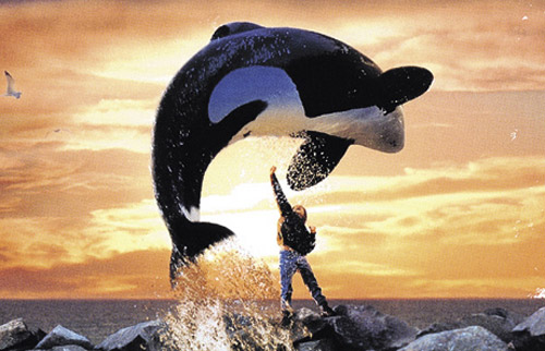 Free Willy!!