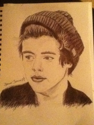 Harry Styles Pen Drawing (Opinion?)