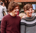 Harry and Louis - louis-tomlinson photo
