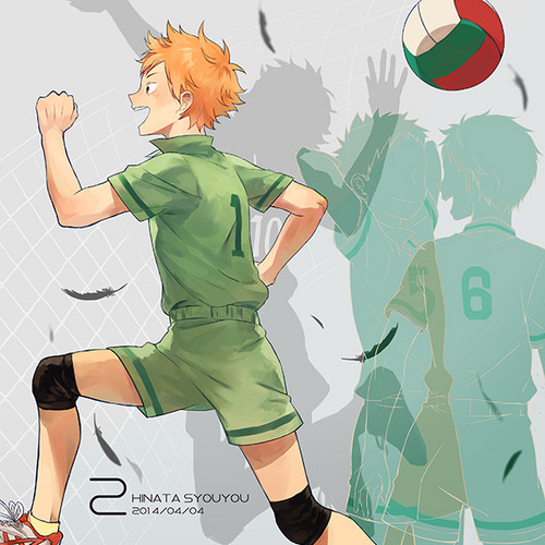 Haikyuu!!(High Kyuu!!) 壁纸 probably with 日本动漫 called Hinata Shouyou
