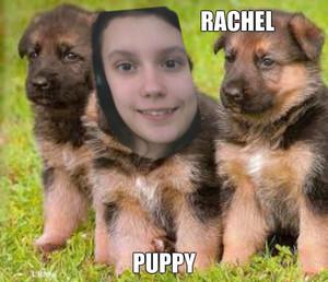 I'm a puppy!