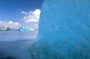 Ice Burg Brrr!