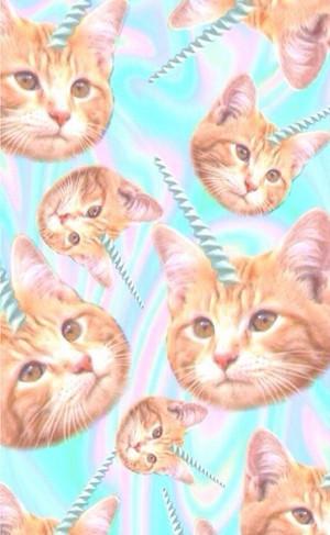 小猫 unicons