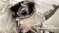 Lady GaGa The Fame Monster - lady-gaga fan art