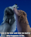 Love last forever - alpha-and-omega photo