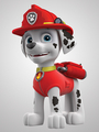 Marshall          - paw-patrol photo