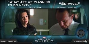 May and Coulson - Turn, Turn, Turn