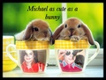 Michael is just as cute as these fluffy rabbits - michael-jackson photo