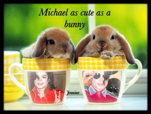 Michael is just as cute as these fluffy rabbits