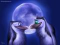 Moonlight Shadow - penguins-of-madagascar fan art