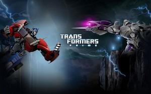 Optimus vs megatern