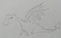 Original Books Toothless's Scketch by Cressida Cowell - how-to-train-your-dragon photo